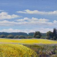 JudyLeilaSchafers-Fields-of