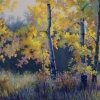 fall-aspen-fenceline