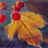 yellow-leaf-cranberry