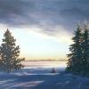 december-dawn