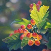 JudyLeilaSchafers-Berry-Abundant-website