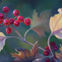 JudyLeilaSchafers-Thanksgiving-Celebration-we