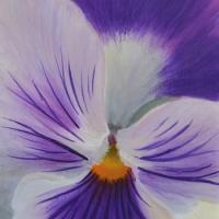 JudyLeilaSchafers-Sun-Dappl