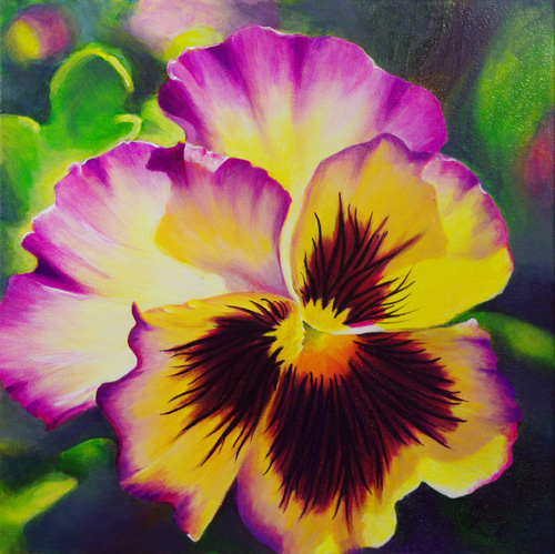 yellow-mauve-pansy-wp-web
