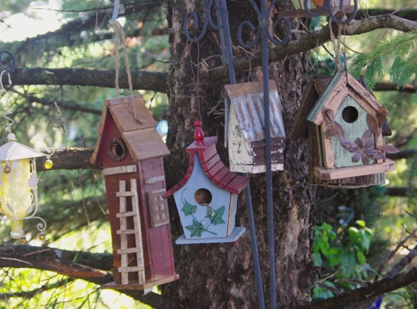 My fun birdhouse community. Even the birds love it and have moved in!