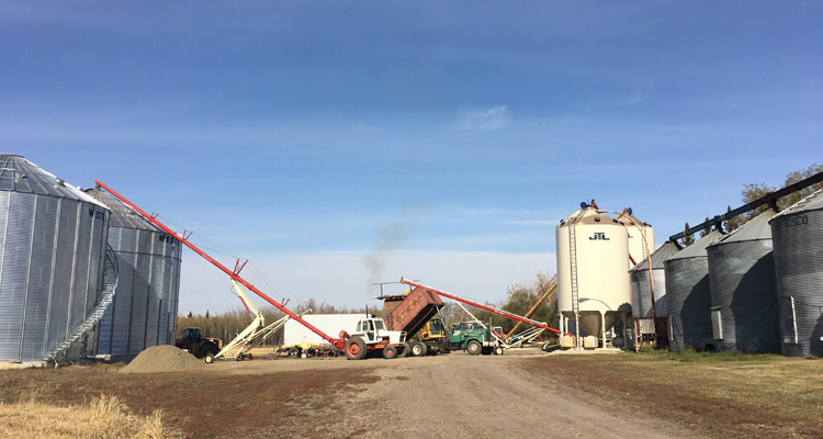 blue sky, steel grain bins and augers