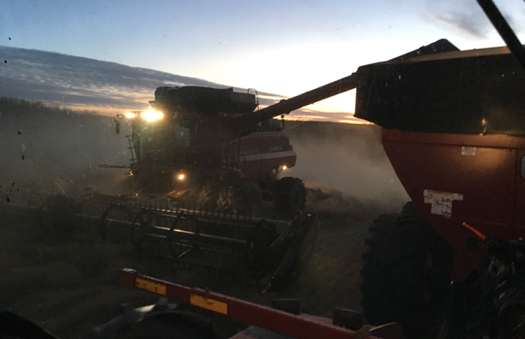 combine in a field at sunset during a prolonged harvest