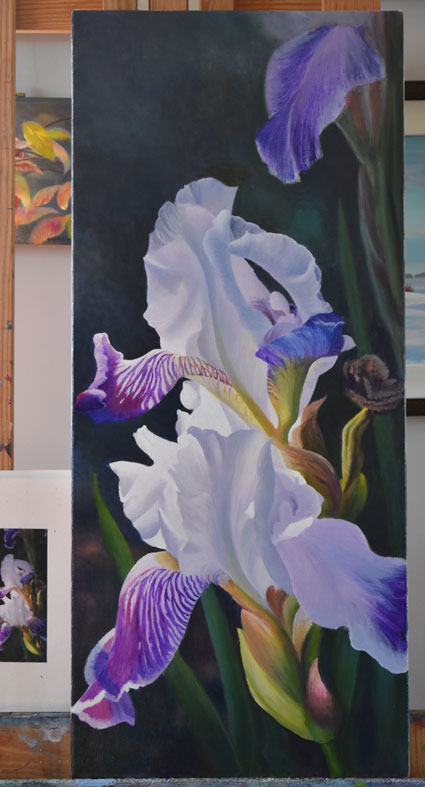 purple and white flowers, close up iris flowers, realistic painting