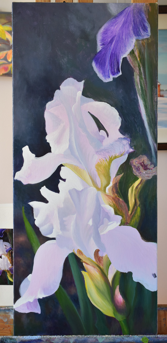 purple and white irises, flowers, painting in progress