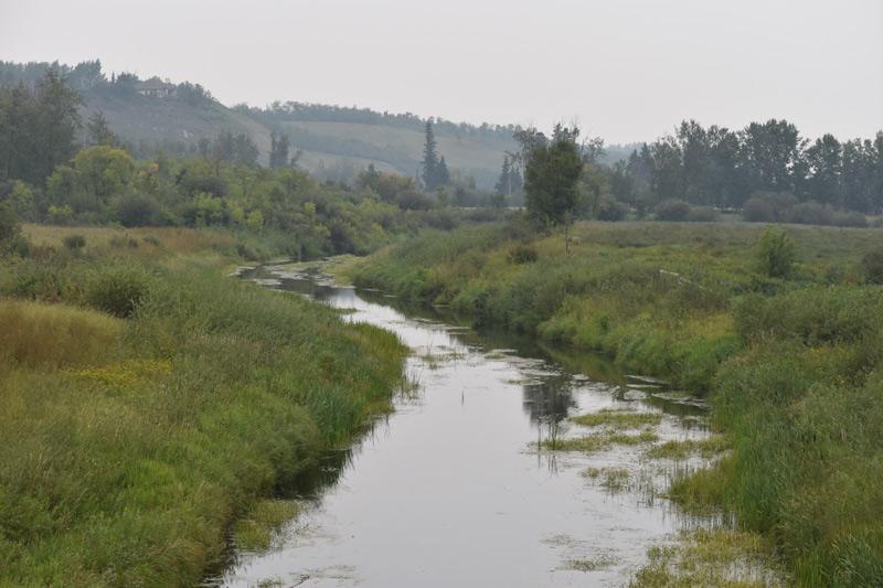 summer river photo